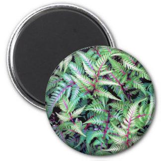 GREEN LEAVES, PURPLE STEMS by SHARON SHARPE mug Magnet