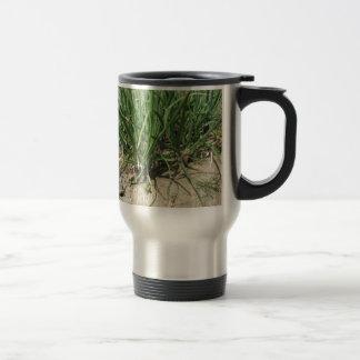 Green leek plants growing in the garden travel mug