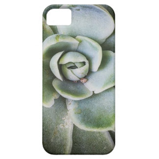 Green Life iPhone 5 Cover