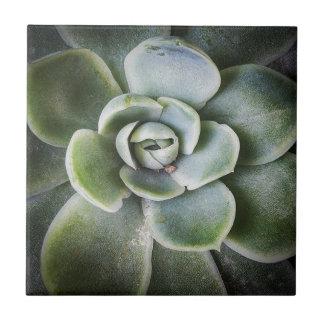 Green Life Tile