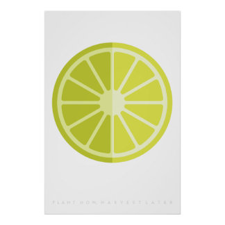 Green Lime Retro Fruit Poster 60's 70's Quote