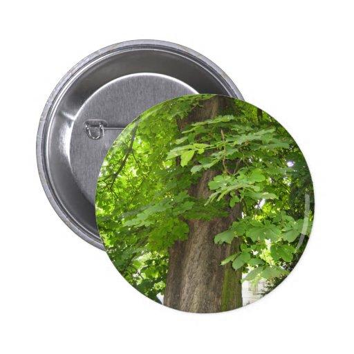 Green living pinback buttons
