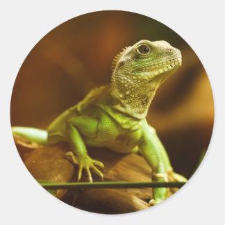 Green Lizard Sticker