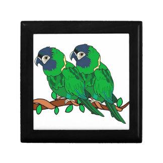 green macaw parrot love art gift box