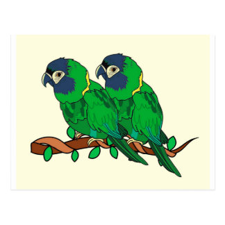green macaw parrot love art postcard