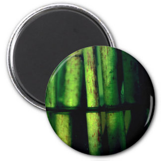 Green macro magnet