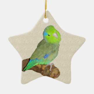 Green male parrotlet ceramic ornament