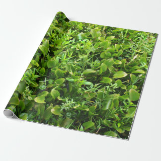 Green Marsh Plants Wrapping Paper