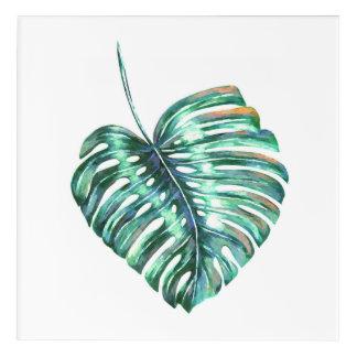 Green monstera leaf tropical exotic foliage acrylic print