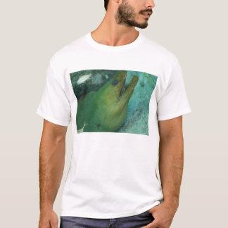 Green Moray T-Shirt