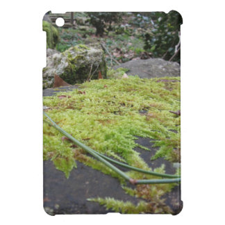 Green moss in nature Detail of moss covered stone Case For The iPad Mini
