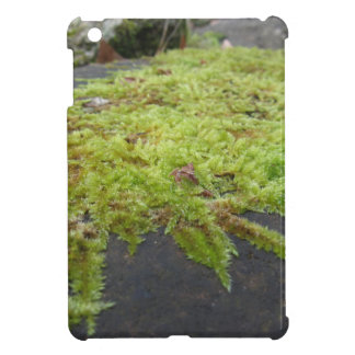 Green moss in nature Detail of moss covered stone iPad Mini Cover