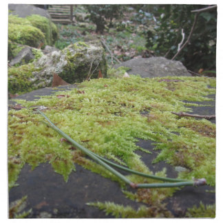 Green moss in nature Detail of moss covered stone Napkin