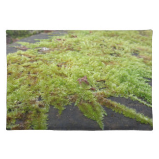Green moss in nature Detail of moss covered stone Placemat