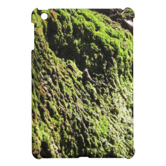 Green moss in nature  Detail of moss covered trunk iPad Mini Cover