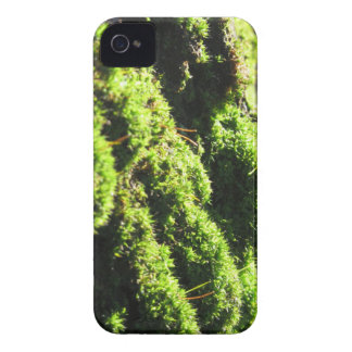 Green moss in nature  Detail of moss covered trunk iPhone 4 Case-Mate Case