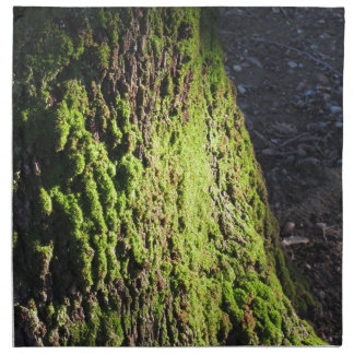 Green moss in nature  Detail of moss covered trunk Napkin