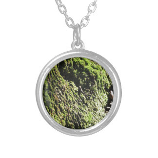 Green moss in nature  Detail of moss covered trunk Silver Plated Necklace