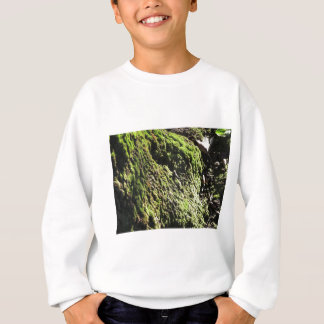 Green moss in nature  Detail of moss covered trunk Sweatshirt