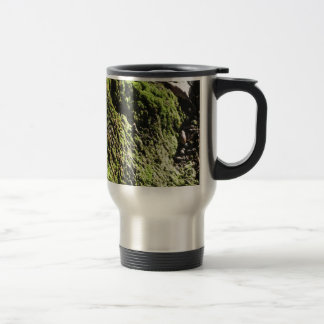 Green moss in nature  Detail of moss covered trunk Travel Mug