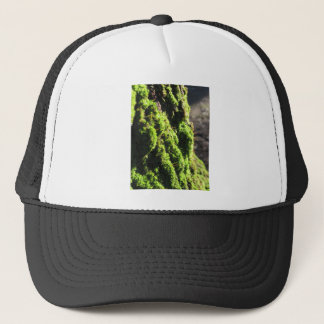 Green moss in nature  Detail of moss covered trunk Trucker Hat