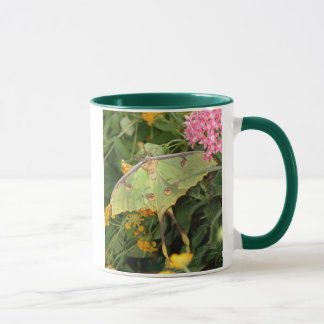 green moth mug