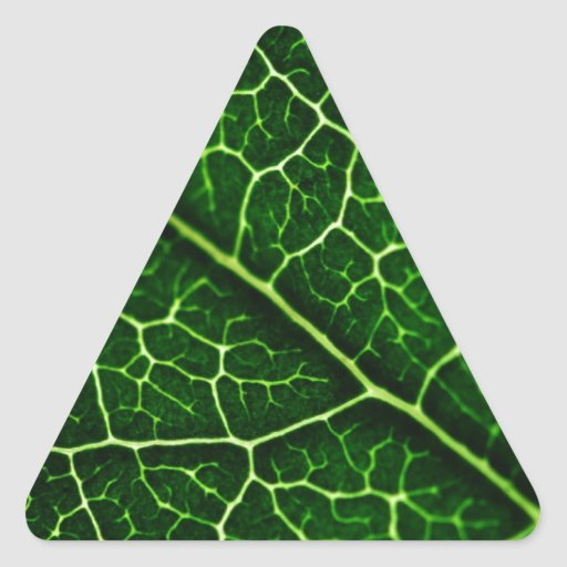 Green nature Leafs natural natural  Green Trees Ea Stickers