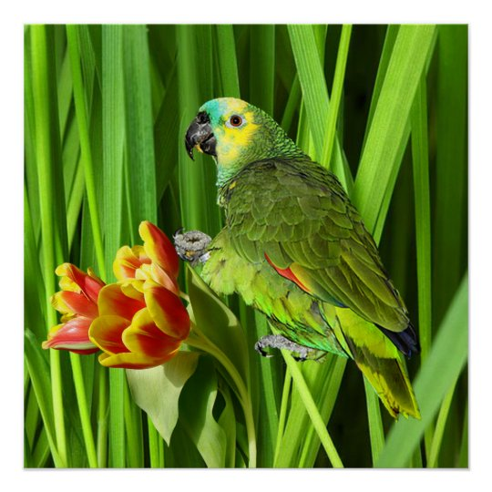 Green Nature With Parrot Poster