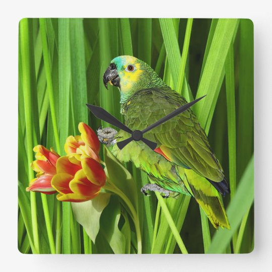 Green Nature With Parrot Square Wall Clock