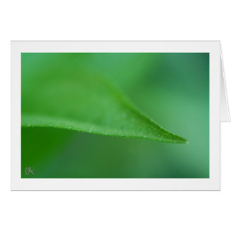 Green on Green Card