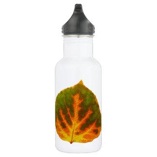 Green Orange & Yellow Aspen Leaf #1 532 Ml Water Bottle