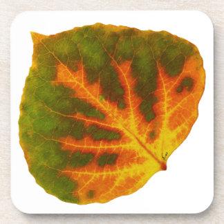 Green Orange & Yellow Aspen Leaf #1 Coaster