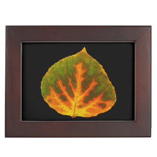 Green Orange & Yellow Aspen Leaf #1 Keepsake Box