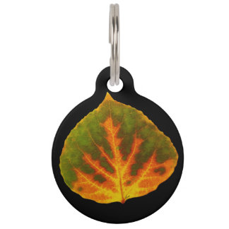 Green Orange & Yellow Aspen Leaf #1 Pet Name Tag