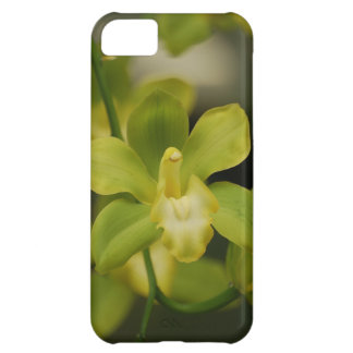 Green Orchid Cover For iPhone 5C