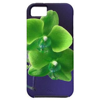 Green Orchid iPhone 5 Case