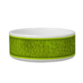 Green Ostrich Print Ceramic Small Dog Bowl