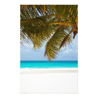 Green Palm Tree on Beach during Daytime Stationery