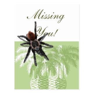Green palm trees with tarantula post card