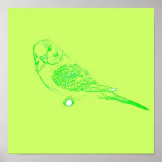 Green Parakeet Poster