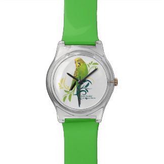 Green Parakeet Watch