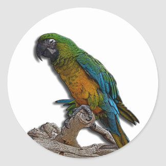Green Parrot alone stickers