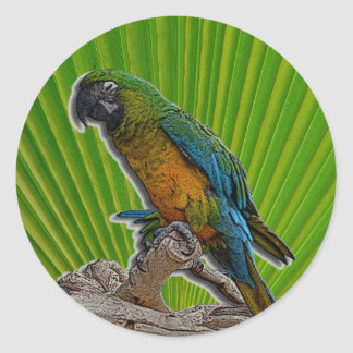 Green Parrot alone stickers - customized