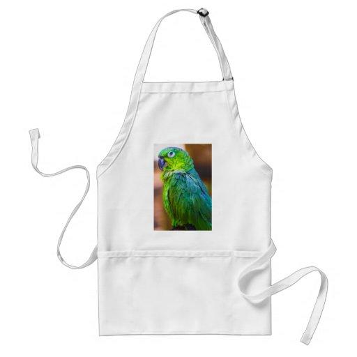 Green Parrot Aprons