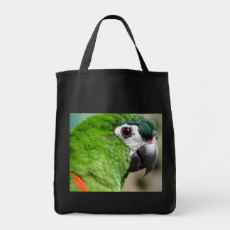 Green Parrot Bag