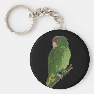 Green Parrot Basic Round Button Keychain