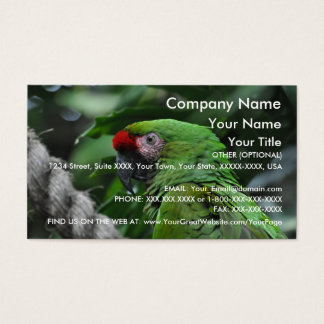 Green Parrot - business card template