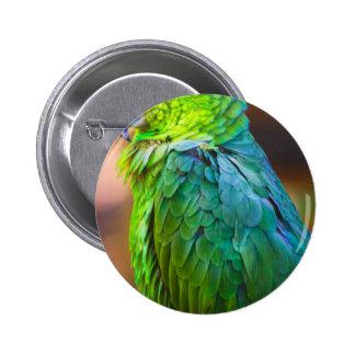 Green Parrot Pinback Button