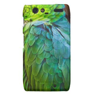 Green Parrot Droid RAZR Case