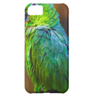 Green Parrot iPhone 5C Cases